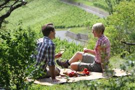 Frankens Saalestück Picknick